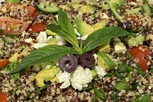 quinoa salad garnished with mint and olives